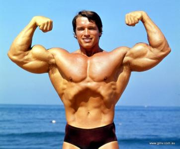 Schwarzenegger forum the iron arnold click thumbnail to see full size image voltagebd Image collections