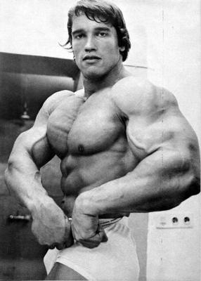 Schwarzenegger forum arnold the king schwarzenegger click thumbnail to see full size image voltagebd Image collections