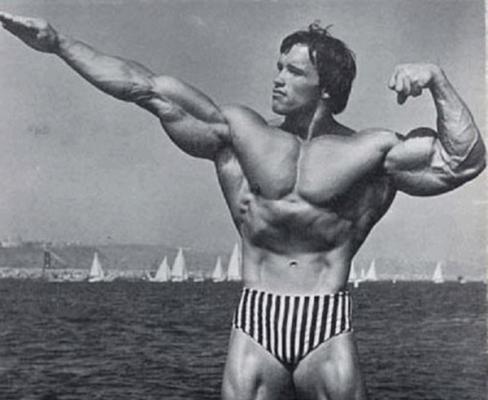40-Insane-Arnold-Schwarzenegger-Bodybuilding-Pictures27-600x492.jpg